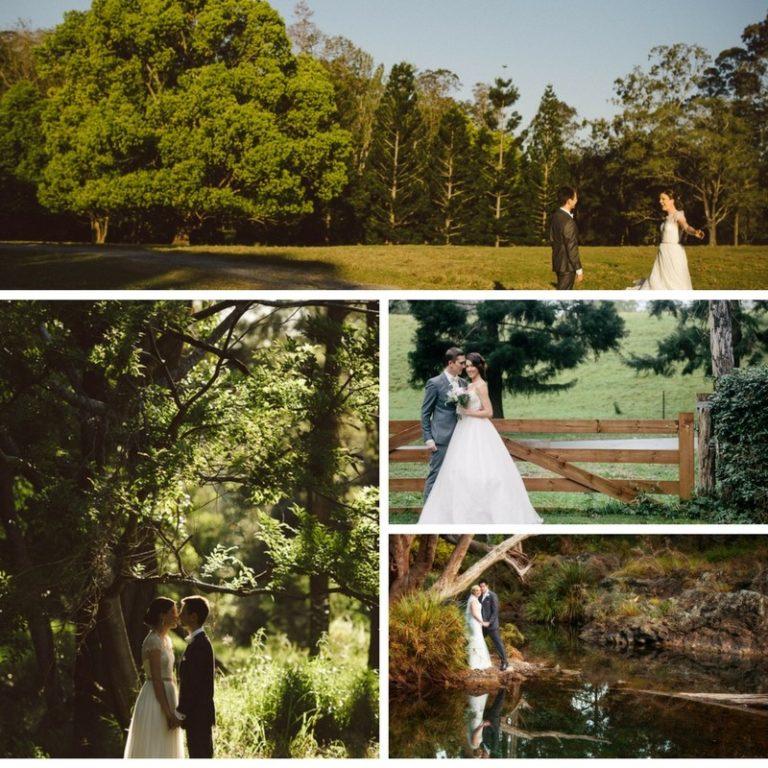 Bundaleer Rainforest Gardens